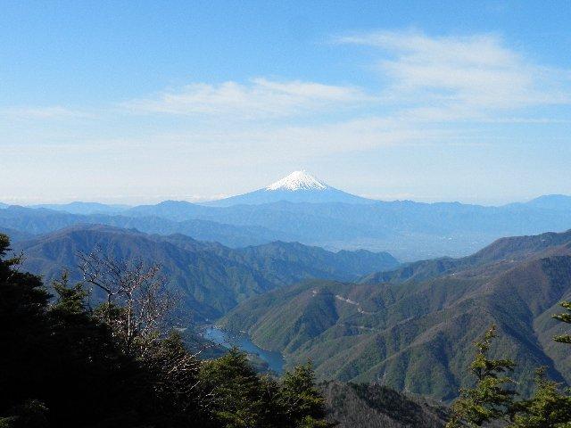 5月13日 雁坂峠から見た富士山