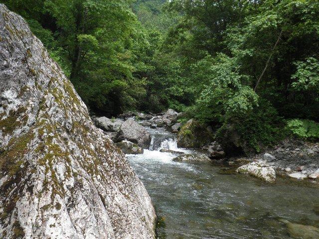 7月7日 取水施設~幌尻山荘間の渡渉する川